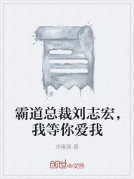 霸道总裁刘志宏,我等你爱我